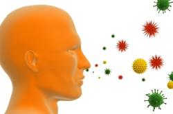 Аллергены как возбудители астматического бронхита