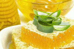 Алоэ и мед для лечения бронхита
