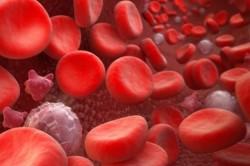 Повышение уровня лейкоцитов в крови при бронхите