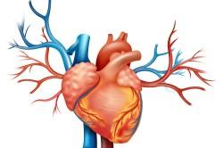 Сердечная недостаточность - вид осложнения